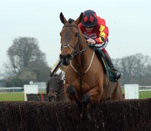 Horse Racing NAPS